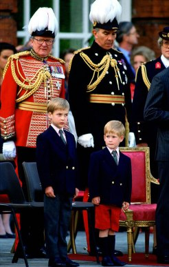 Military parades and troop reviews were all part of growing up for William and Harry