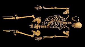 Based on DNA evidence, it was confirmed that the bones found under a car park in Leicester were those of Richard III.